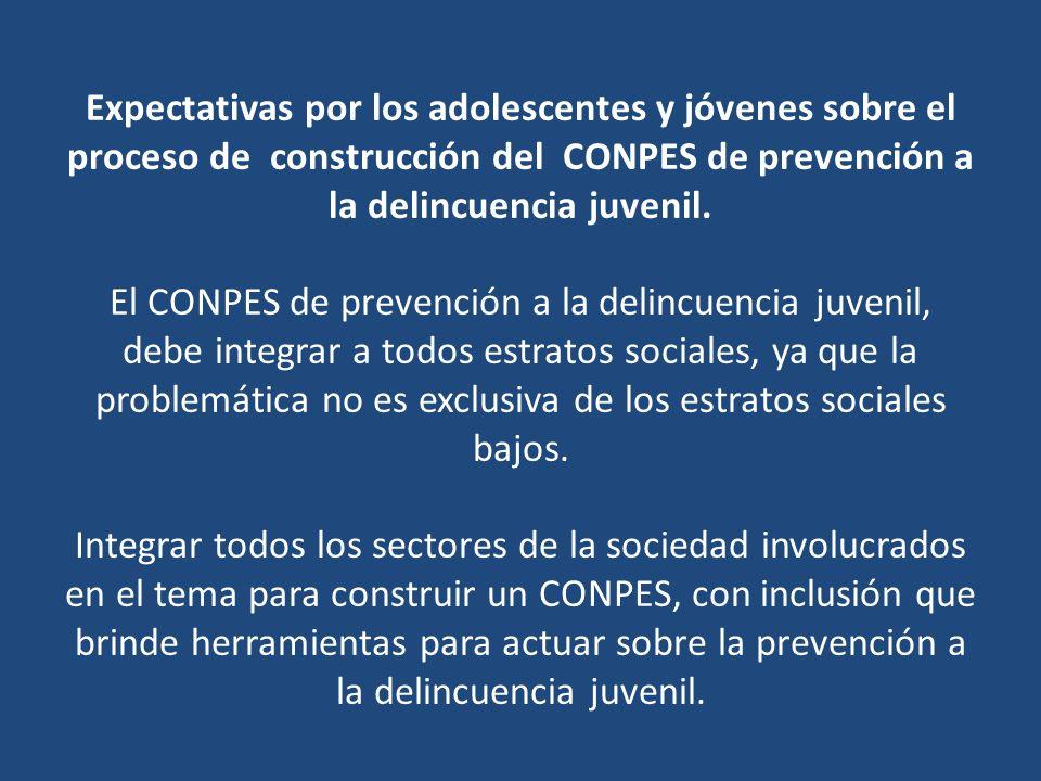 Que se tomen en cuenta los aportes brindados para la construcción del CONPES, y que este se convierta en una columna vertebral y no un eje o componente de otras políticas.