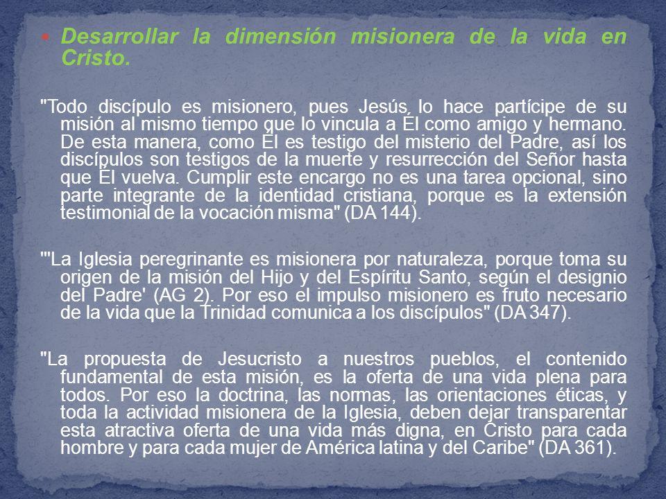 Desarrollar la dimensión misionera de la vida en Cristo.