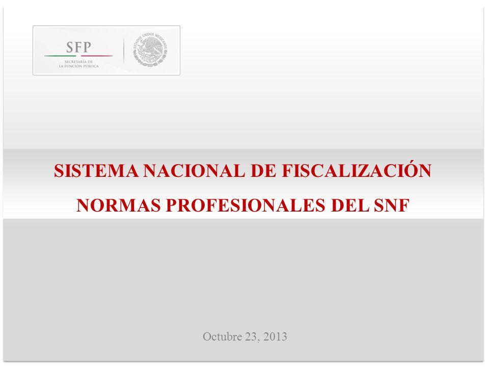SISTEMA NACIONAL DE FISCALIZACIÓN NORMAS PROFESIONALES DEL SNF Octubre 23, 2013