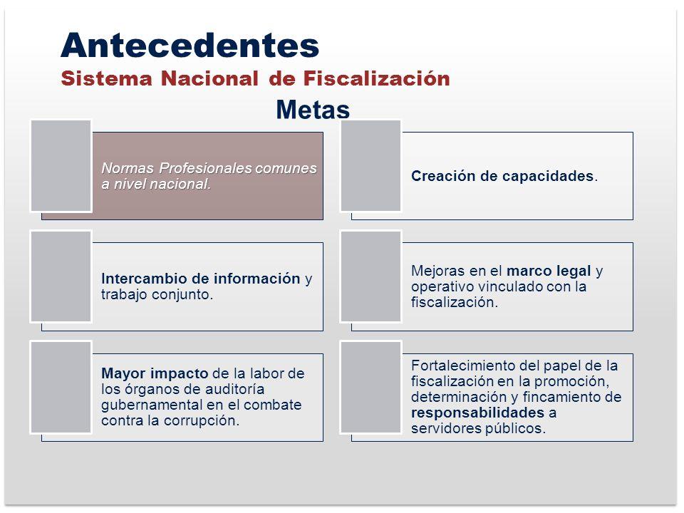 Antecedentes Sistema Nacional de Fiscalización Metas Normas Profesionales comunes a nivel nacional.