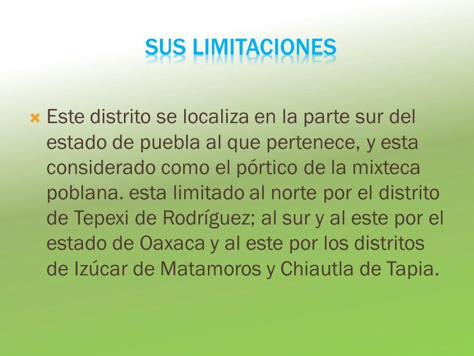 Este distrito se localiza en la parte sur del estado de puebla al que pertenece, y esta considerado como el pórtico de la mixteca poblana. esta limita