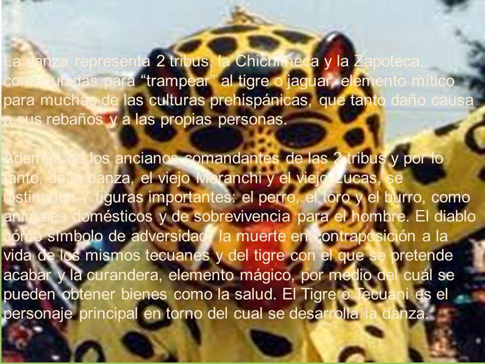 La danza representa 2 tribus, la Chichimeca y la Zapoteca, confabuladas para trampear al tigre o jaguar, elemento mítico para muchas de las culturas p