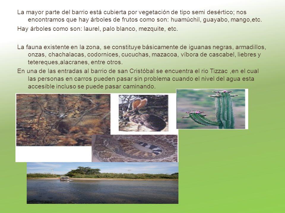 La mayor parte del barrio está cubierta por vegetación de tipo semi desértico; nos encontramos que hay árboles de frutos como son: huamúchil, guayabo,