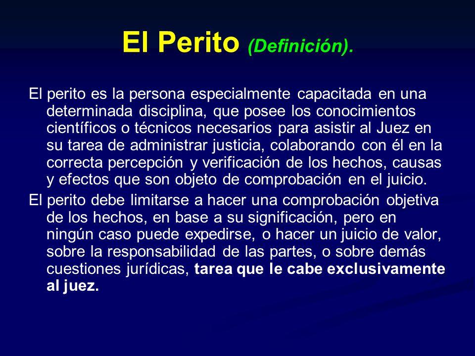 CONTENIDO DEL INFORME PERICIAL DE PARTE