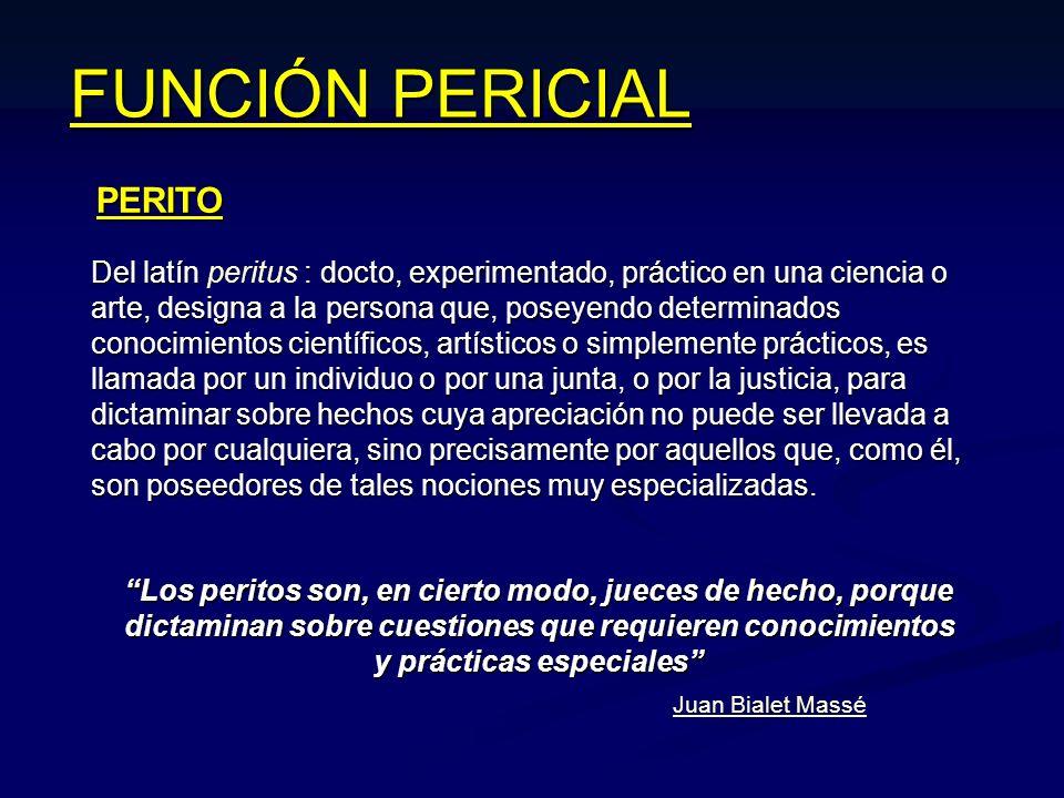 FUNCIÓN PERICIAL PERITO Del latín : docto, experimentado, práctico en una ciencia o arte, designa a la persona que, poseyendo determinados conocimient