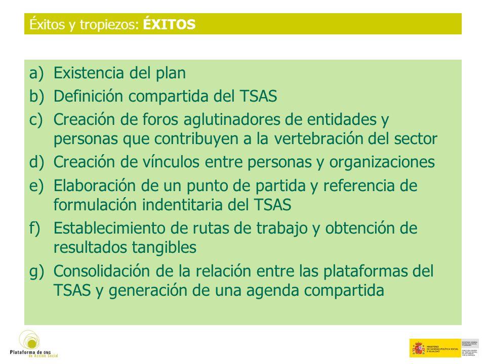 Éxitos y tropiezos: ÉXITOS a)Existencia del plan b)Definición compartida del TSAS c)Creación de foros aglutinadores de entidades y personas que contribuyen a la vertebración del sector d)Creación de vínculos entre personas y organizaciones e)Elaboración de un punto de partida y referencia de formulación indentitaria del TSAS f)Establecimiento de rutas de trabajo y obtención de resultados tangibles g)Consolidación de la relación entre las plataformas del TSAS y generación de una agenda compartida