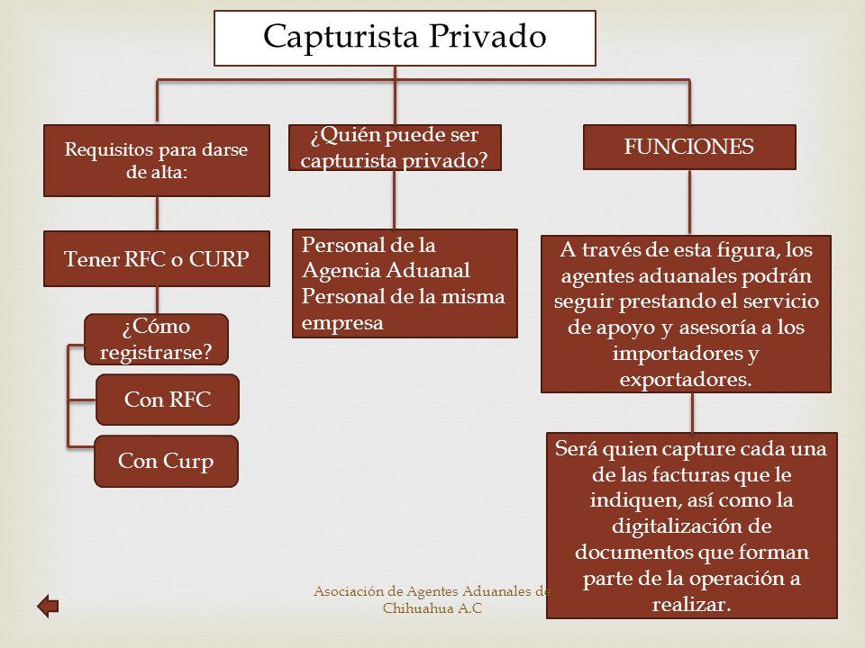 Capturista Privado Requisitos para darse de alta: FUNCIONES Tener RFC o CURP A través de esta figura, los agentes aduanales podrán seguir prestando el
