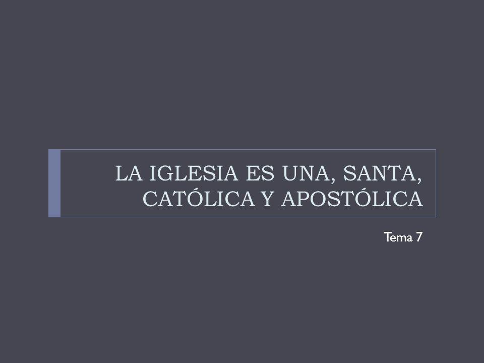 LA IGLESIA ES UNA, SANTA, CATÓLICA Y APOSTÓLICA Tema 7