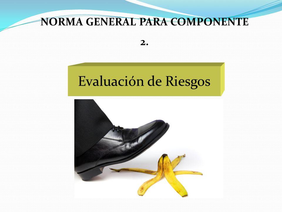 Evaluación de Riesgos NORMA GENERAL PARA COMPONENTE 2.