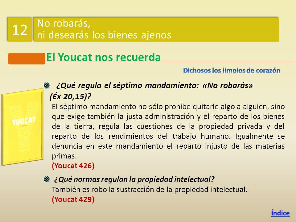 ¿Qué regula el séptimo mandamiento: «No robarás» (Éx 20,15).