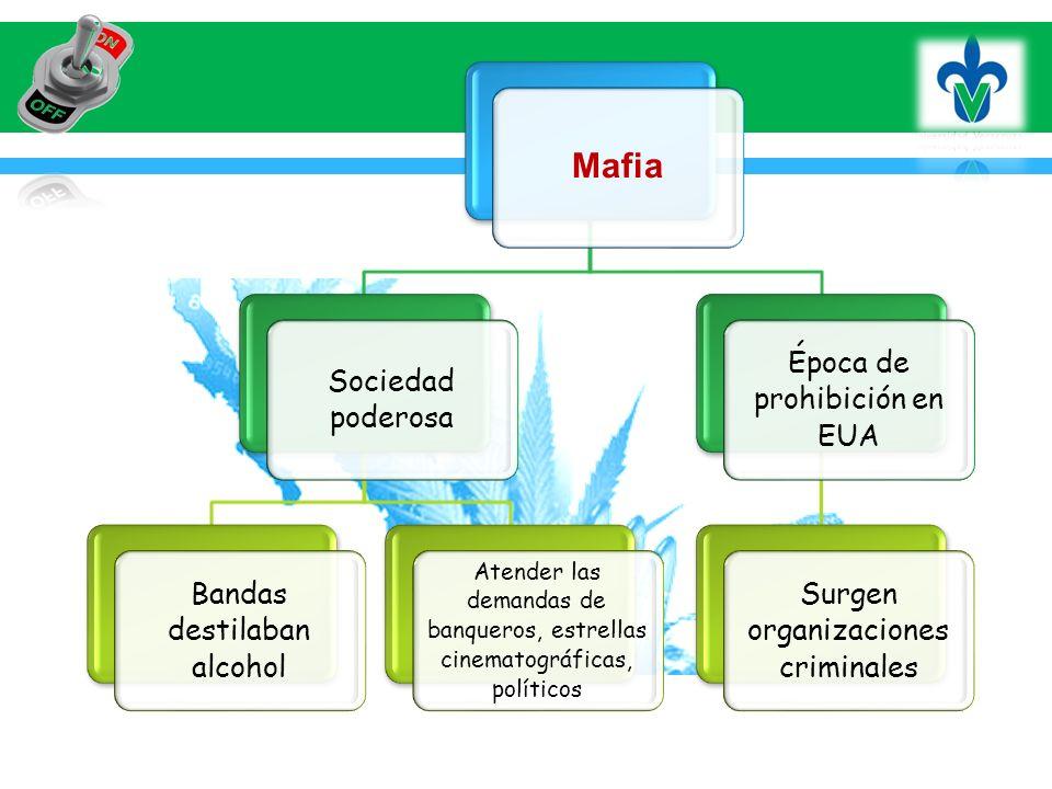 Mafia Sociedad poderosa Bandas destilaban alcohol Atender las demandas de banqueros, estrellas cinematográficas, políticos Época de prohibición en EUA Surgen organizaciones criminales