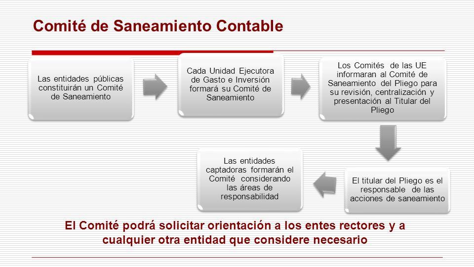 Comité de Saneamiento Contable Las entidades públicas constituirán un Comité de Saneamiento Cada Unidad Ejecutora de Gasto e Inversión formará su Comi