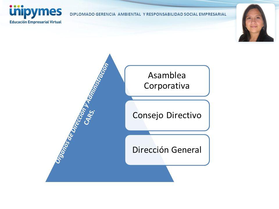 DIPLOMADO GERENCIA AMBIENTAL Y RESPONSABILIDAD SOCIAL EMPRESARIAL Asamblea Corporativa Consejo DirectivoDirección General Órganos de Dirección y Admin