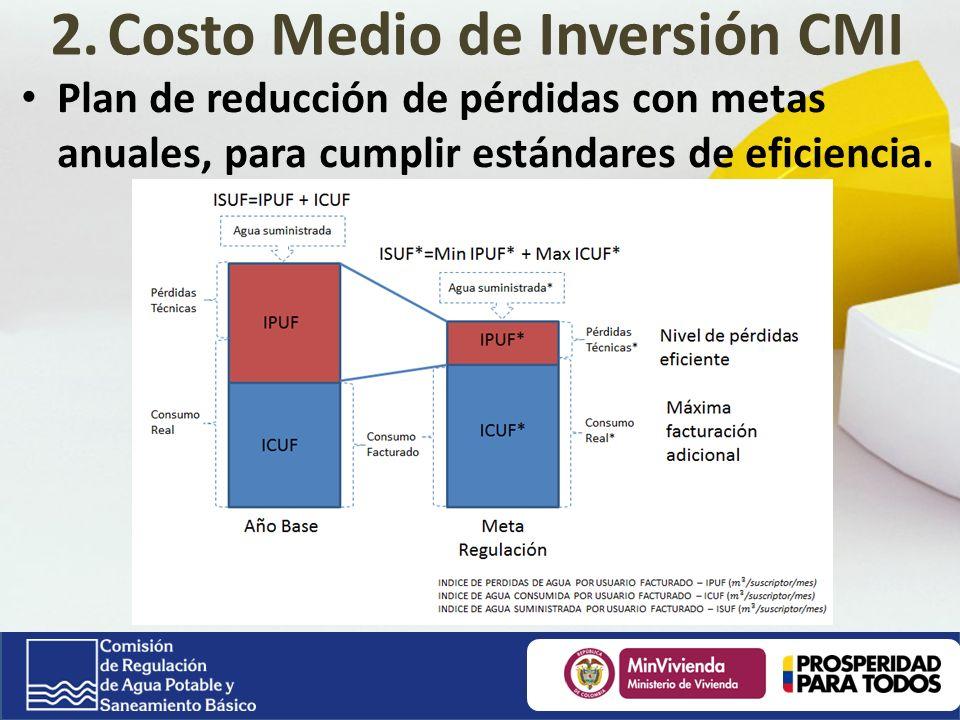 Plan de reducción de pérdidas con metas anuales, para cumplir estándares de eficiencia.