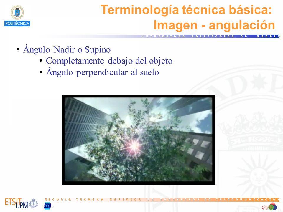Terminología técnica básica: Imagen - angulación Ángulo Nadir o Supino Completamente debajo del objeto Ángulo perpendicular al suelo
