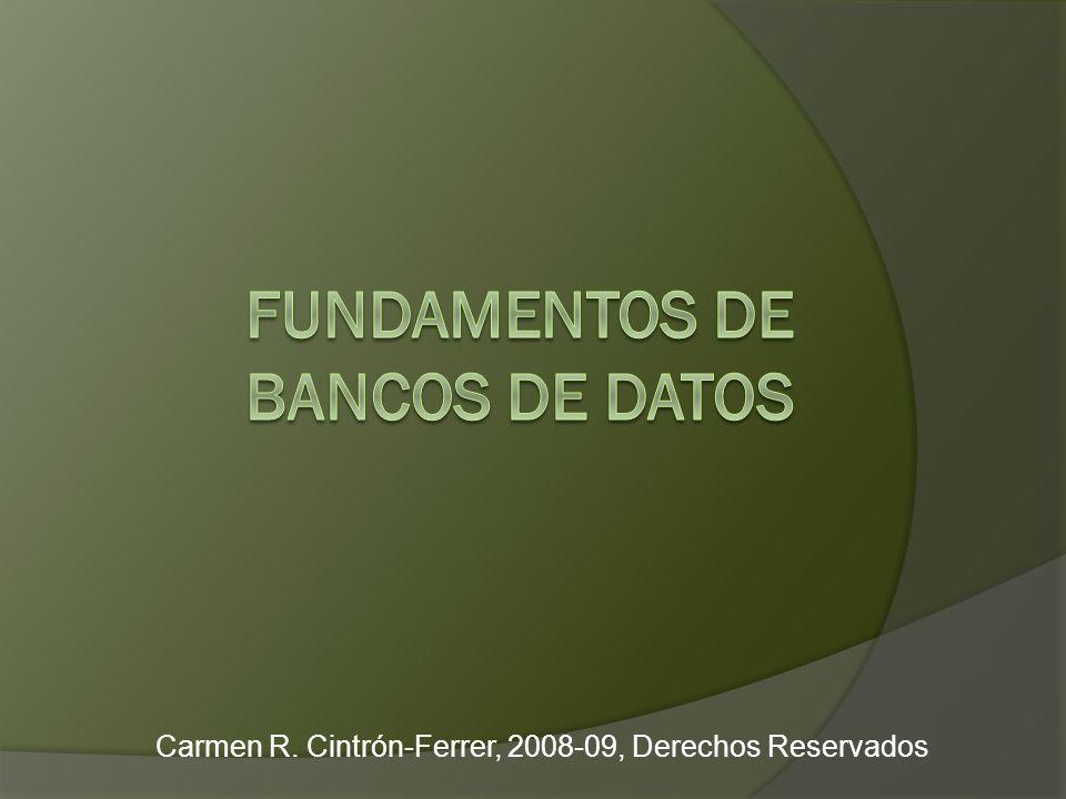 Carmen R. Cintrón-Ferrer, 2008-09, Derechos Reservados