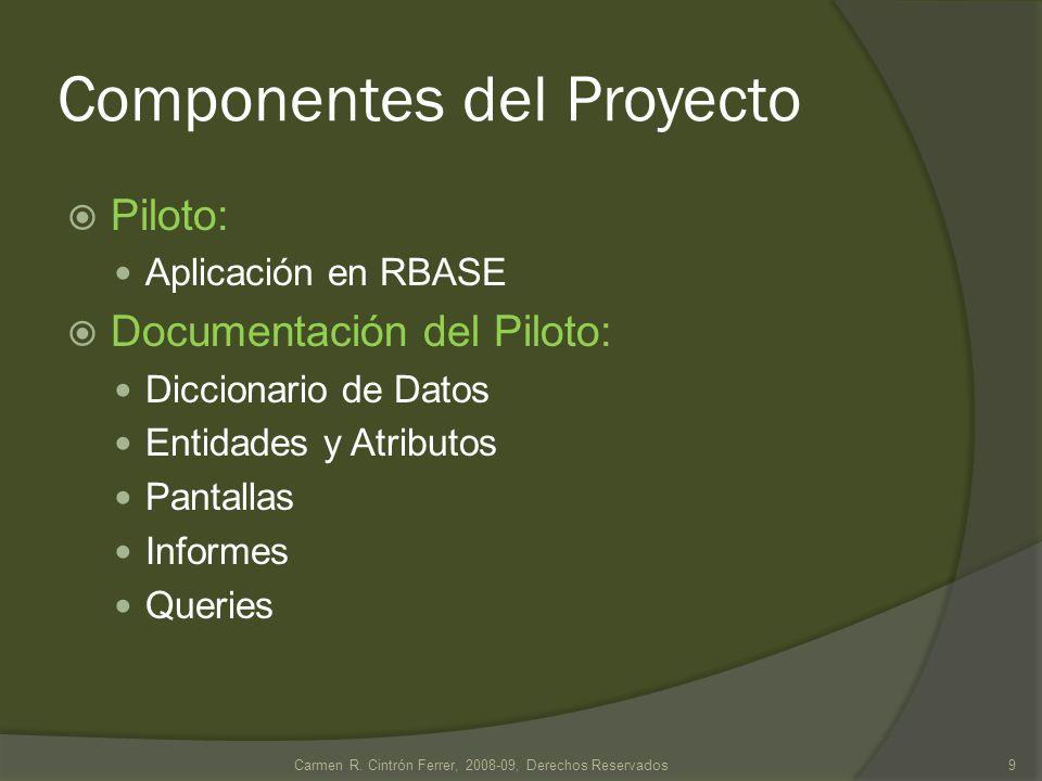 Componentes del Proyecto Piloto: Aplicación en RBASE Documentación del Piloto: Diccionario de Datos Entidades y Atributos Pantallas Informes Queries 9Carmen R.