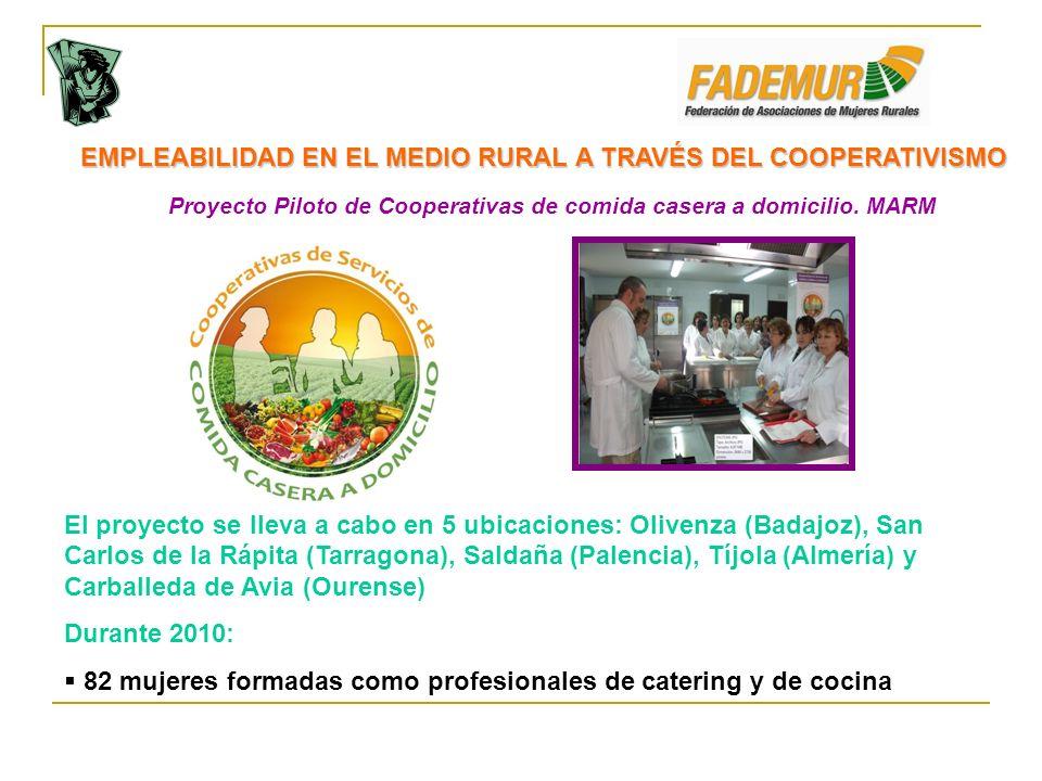 Proyecto Piloto de Cooperativas de comida casera a domicilio. MARM EMPLEABILIDAD EN EL MEDIO RURAL A TRAVÉS DEL COOPERATIVISMO El proyecto se lleva a