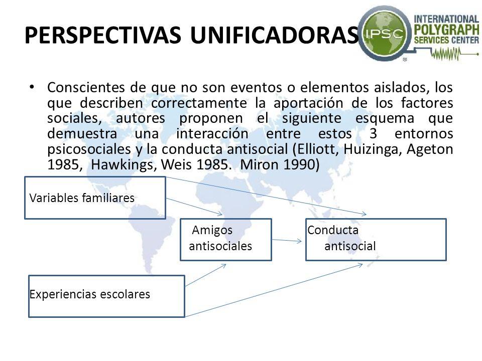 PERSPECTIVAS UNIFICADORAS Conscientes de que no son eventos o elementos aislados, los que describen correctamente la aportación de los factores social