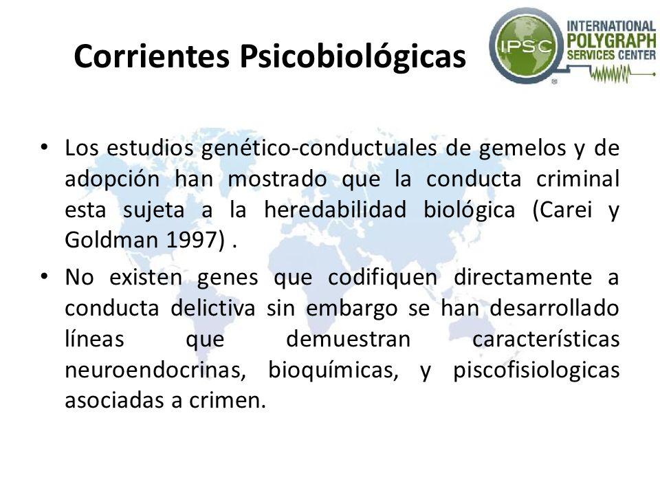 Corrientes Psicobiológicas Los estudios genético-conductuales de gemelos y de adopción han mostrado que la conducta criminal esta sujeta a la heredabi