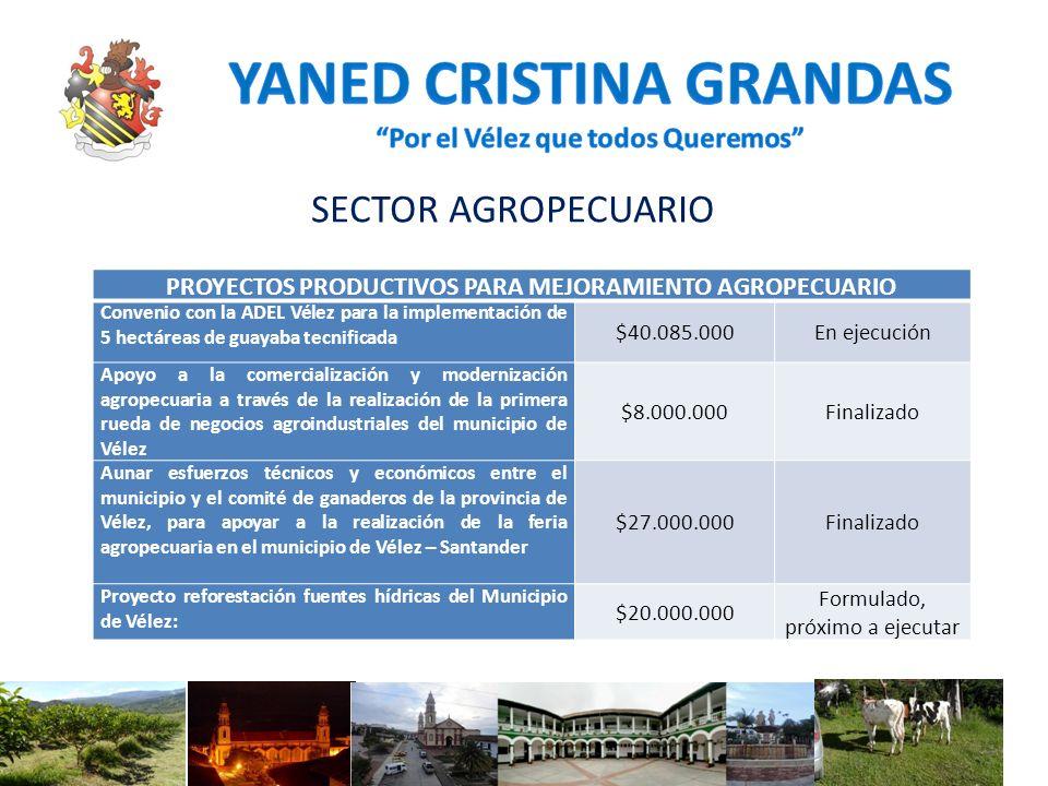 SECTOR AGROPECUARIO PROYECTOS PRODUCTIVOS PARA MEJORAMIENTO AGROPECUARIO Convenio con la ADEL Vélez para la implementación de 5 hectáreas de guayaba t