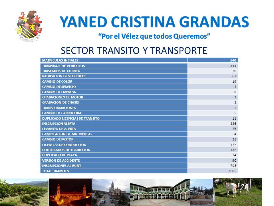 SECTOR TRANSITO Y TRANSPORTE MATRICULAS INCIALES540 TRASPASOS DE VEHICULOS344 TRASLADOS DE CUENTA20 RADICACION DE VEHICULOS67 CAMBIO DE COLOR19 CAMBIO