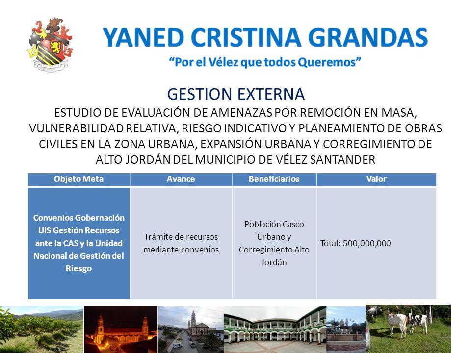 GESTION EXTERNA ESTUDIO DE EVALUACIÓN DE AMENAZAS POR REMOCIÓN EN MASA, VULNERABILIDAD RELATIVA, RIESGO INDICATIVO Y PLANEAMIENTO DE OBRAS CIVILES EN