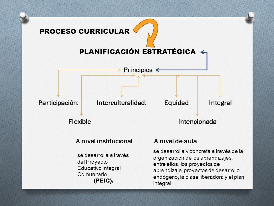 PROCESO CURRICULAR PLANIFICACIÓN ESTRATÉGICA Principios Participación:Interculturalidad:EquidadIntegral FlexibleIntencionada A nivel institucionalA ni