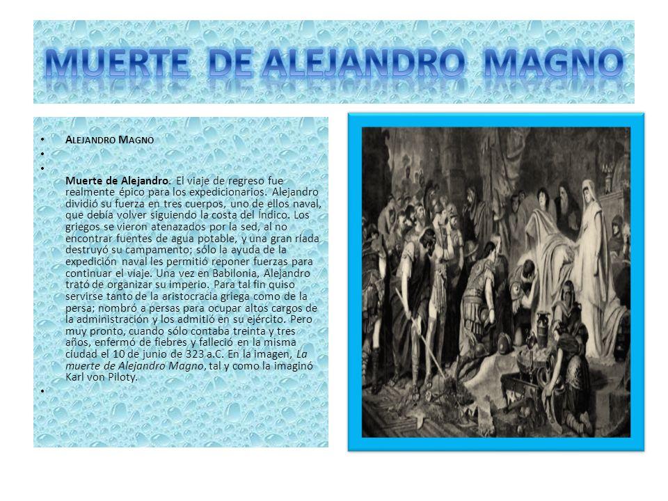 Es célebremente conocida la fundación, por parte del gran Alejandro Magno, de una ciudad en honor a su caballo Bucéfalo. La misma se llamó Alejandría