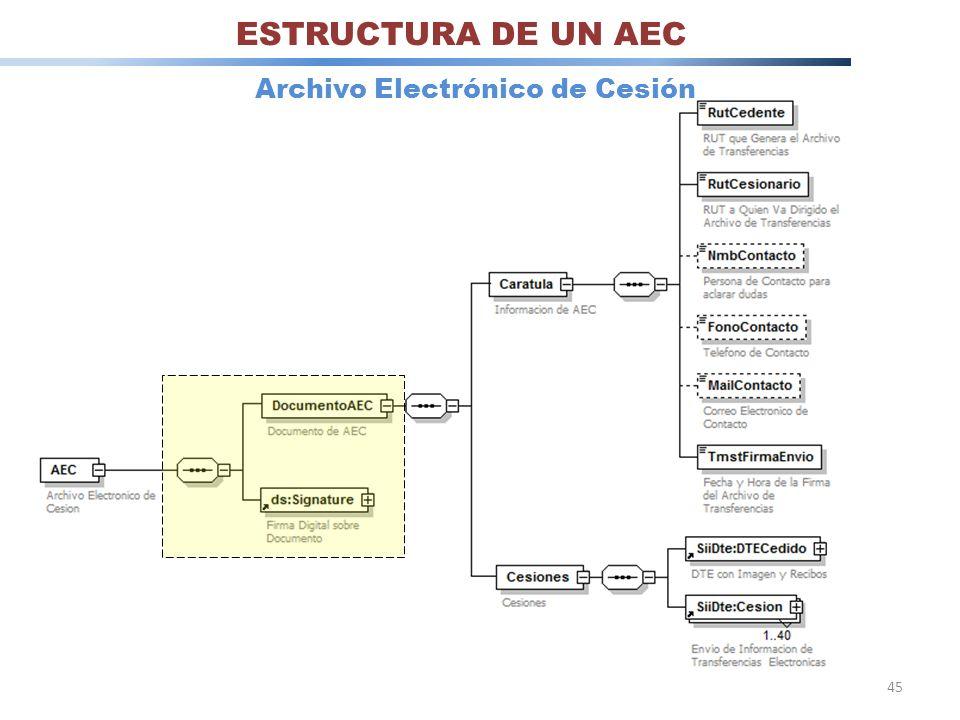 45 ESTRUCTURA DE UN AEC Archivo Electrónico de Cesión