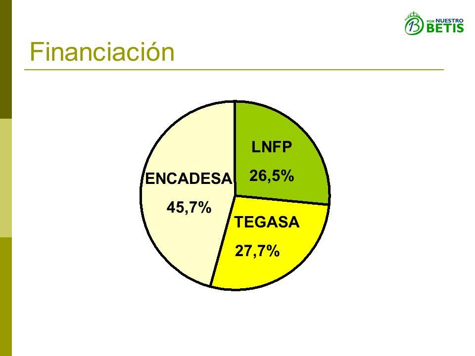 TEGASA 27,7% LNFP 26,5% ENCADESA 45,7% Financiación