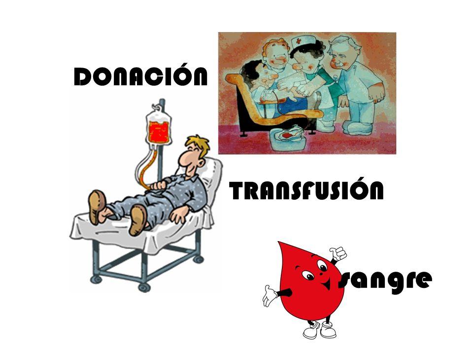 TRANSFUSIÓN DONACIÓN sangre