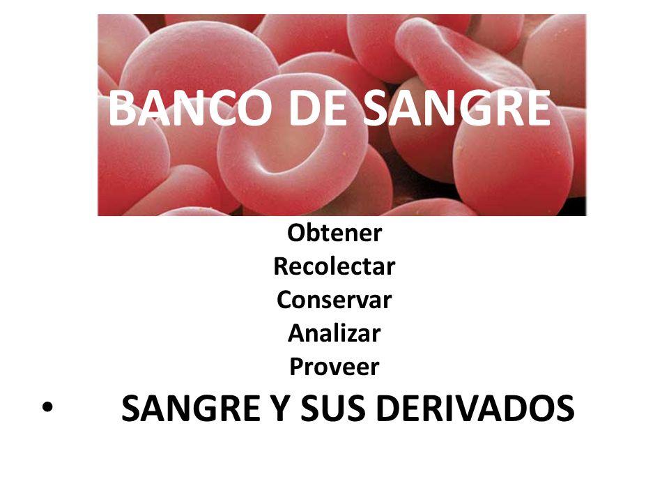 BANCO DE SANGRE Obtener Recolectar Conservar Analizar Proveer SANGRE Y SUS DERIVADOS