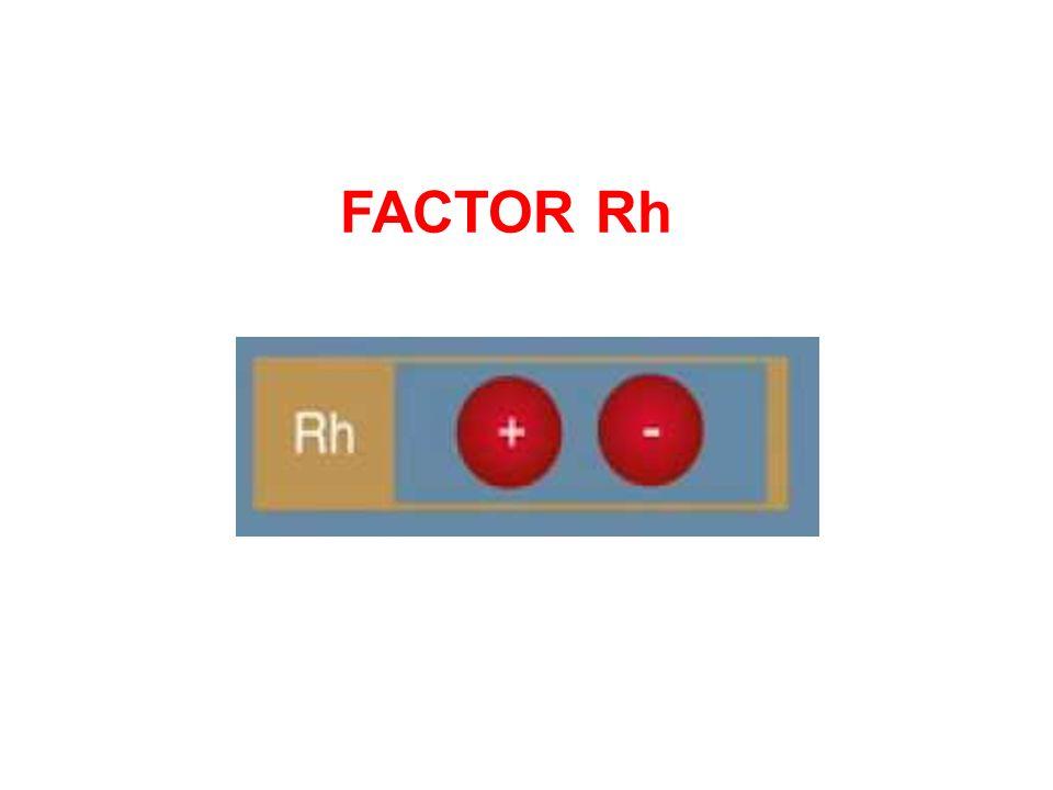 FACTOR Rh.