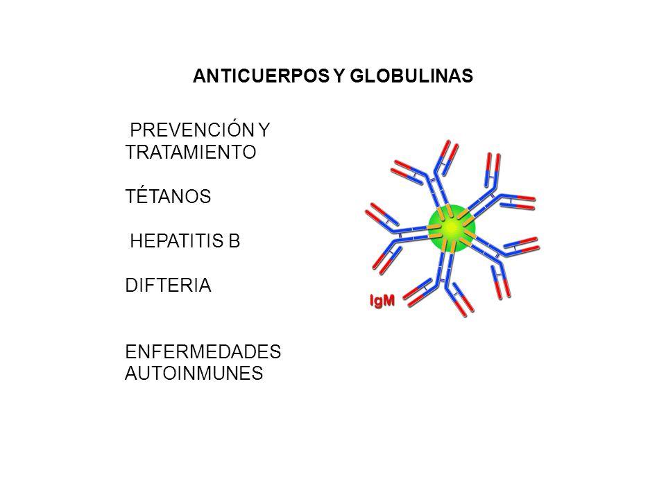 ANTICUERPOS Y GLOBULINAS PREVENCIÓN Y TRATAMIENTO TÉTANOS HEPATITIS B DIFTERIA ENFERMEDADES AUTOINMUNES
