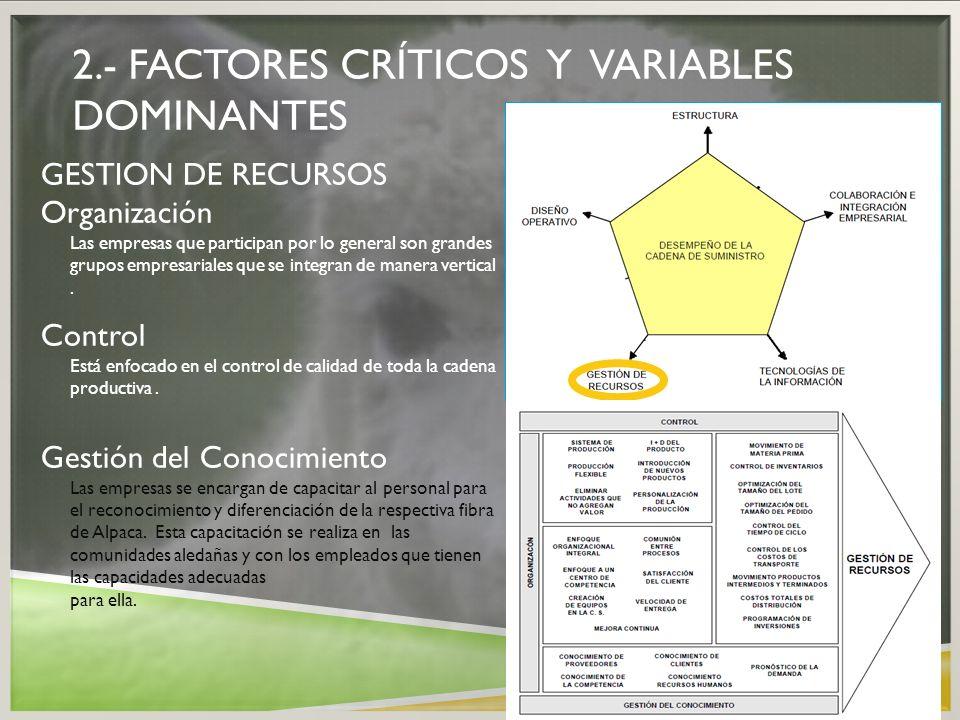 2.- FACTORES CRÍTICOS Y VARIABLES DOMINANTES GESTION DE RECURSOS Organización Las empresas que participan por lo general son grandes grupos empresaria