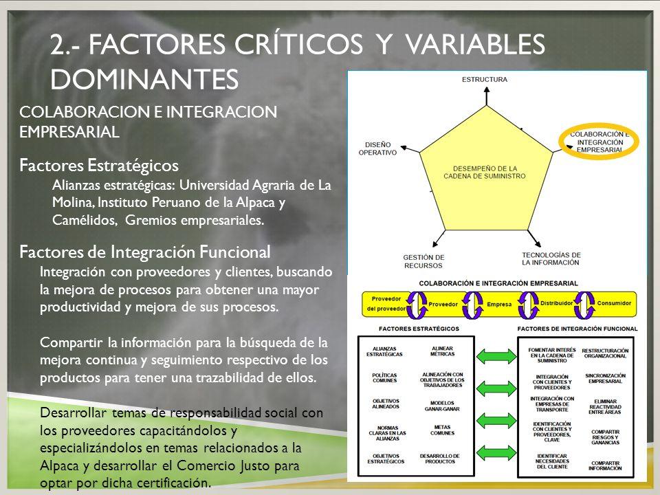 2.- FACTORES CRÍTICOS Y VARIABLES DOMINANTES COLABORACION E INTEGRACION EMPRESARIAL Factores Estratégicos Alianzas estratégicas: Universidad Agraria d