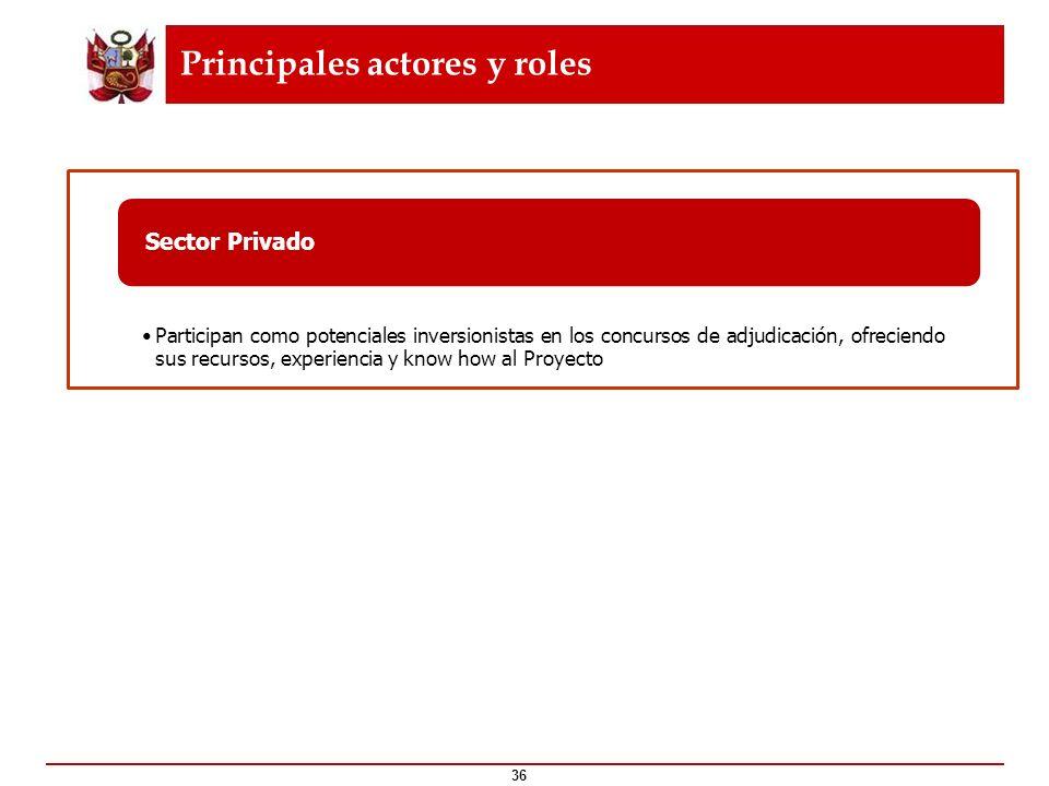 Principales actores y roles 36