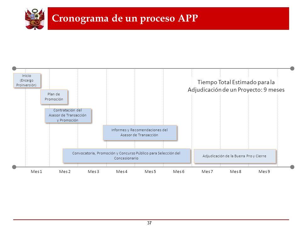 Cronograma de un proceso APP 37 Mes 1Mes 2Mes 3Mes 4Mes 5Mes 6Mes 7Mes 8Mes 9 Inicio (Encargo Proinversión) Inicio (Encargo Proinversión) Convocatoria
