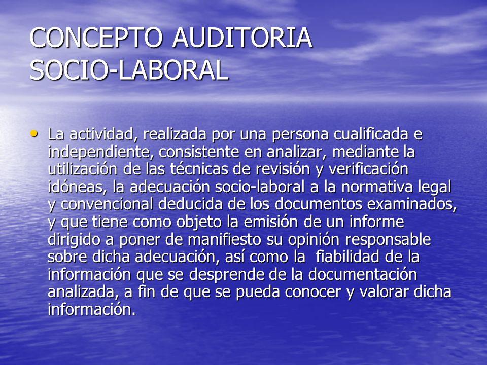 Desempeño actividad Tendrá necesariamente que ser realizada por un auditor socio-laboral, mediante la emisión del correspondiente informe y con sujeción a los requisitos y formalidades establecidos en las normas técnicas de auditoría.