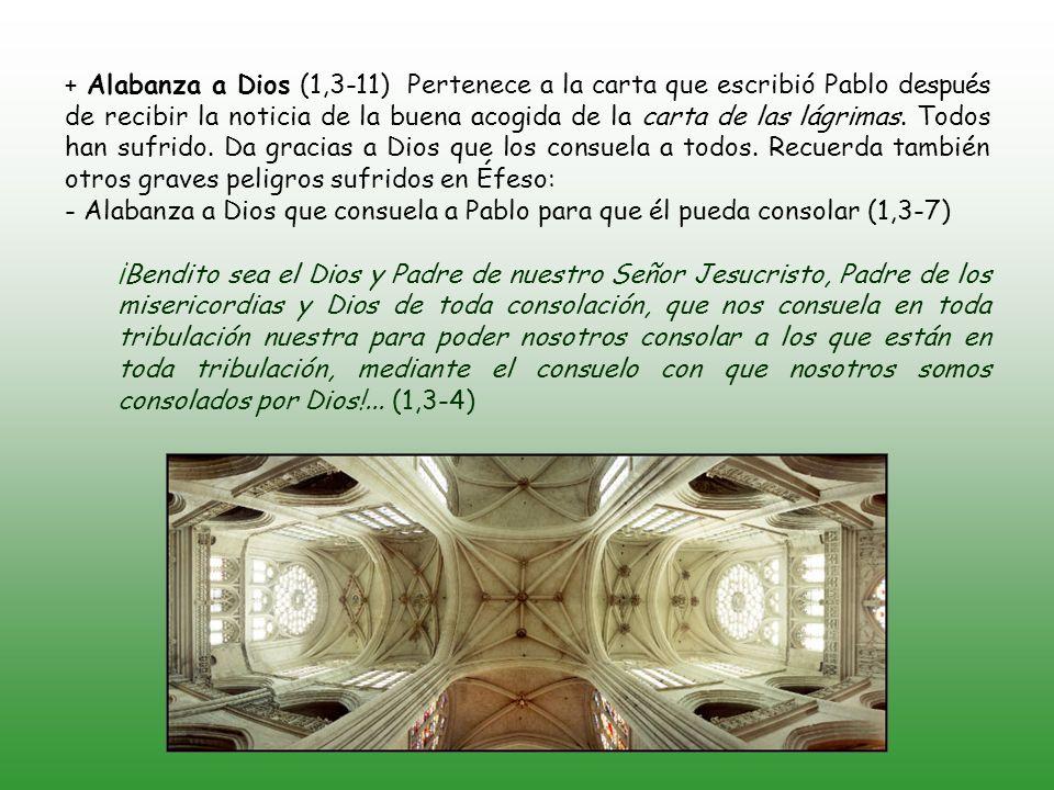 + Saludo (1-2) Pablo, apóstol de Jesucristo por la voluntad de Dios, y Timoteo, el hermano, a la Iglesia de Dios que está en Corinto, con todos los santos que están en toda Acaya; a vosotros gracia y paz de parte de Dios, Padre nuestro, y del Señor Jesucristo.