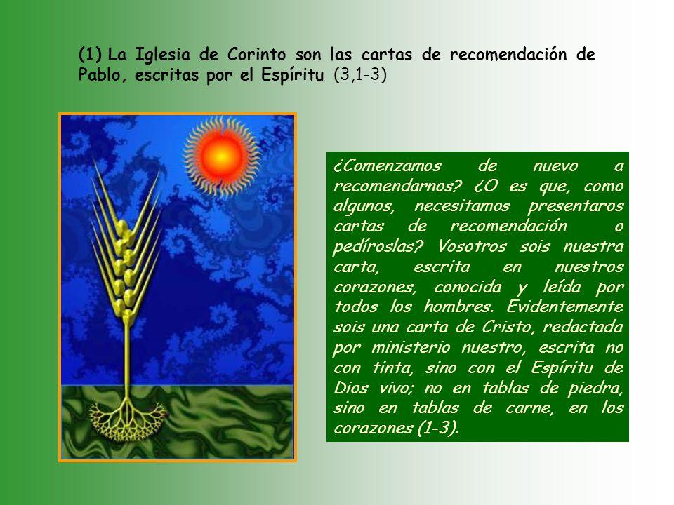 b. b. La gloria del ministerio apostólico (3,1-6,10).