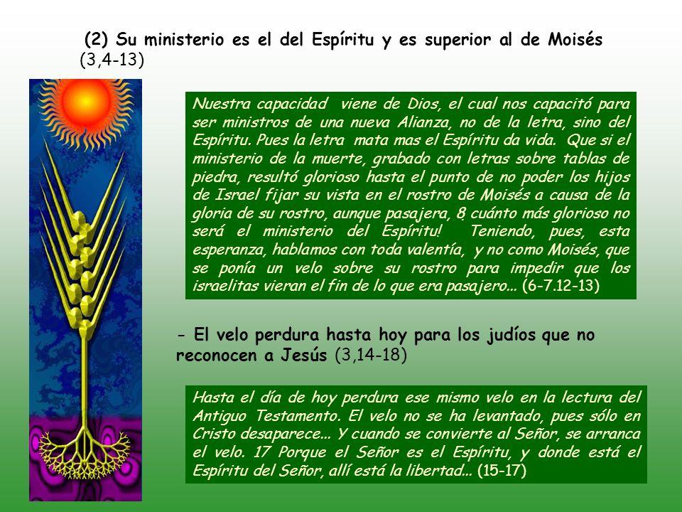 (1) La Iglesia de Corinto son las cartas de recomendación de Pablo, escritas por el Espíritu (3,1-3) ¿Comenzamos de nuevo a recomendarnos.