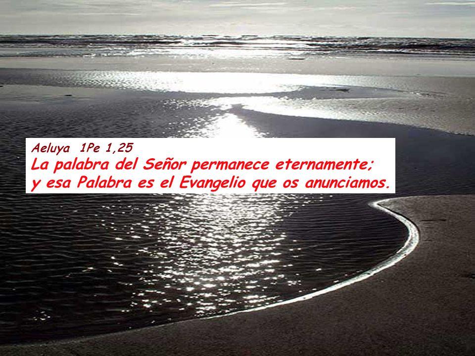 Aeluya 1Pe 1,25 La palabra del Señor permanece eternamente; y esa Palabra es el Evangelio que os anunciamos.
