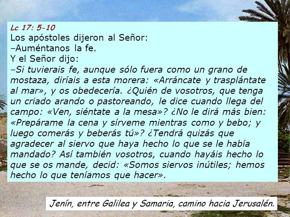 Lc 17: 5-10 Los apóstoles dijeron al Señor: –Auméntanos la fe.