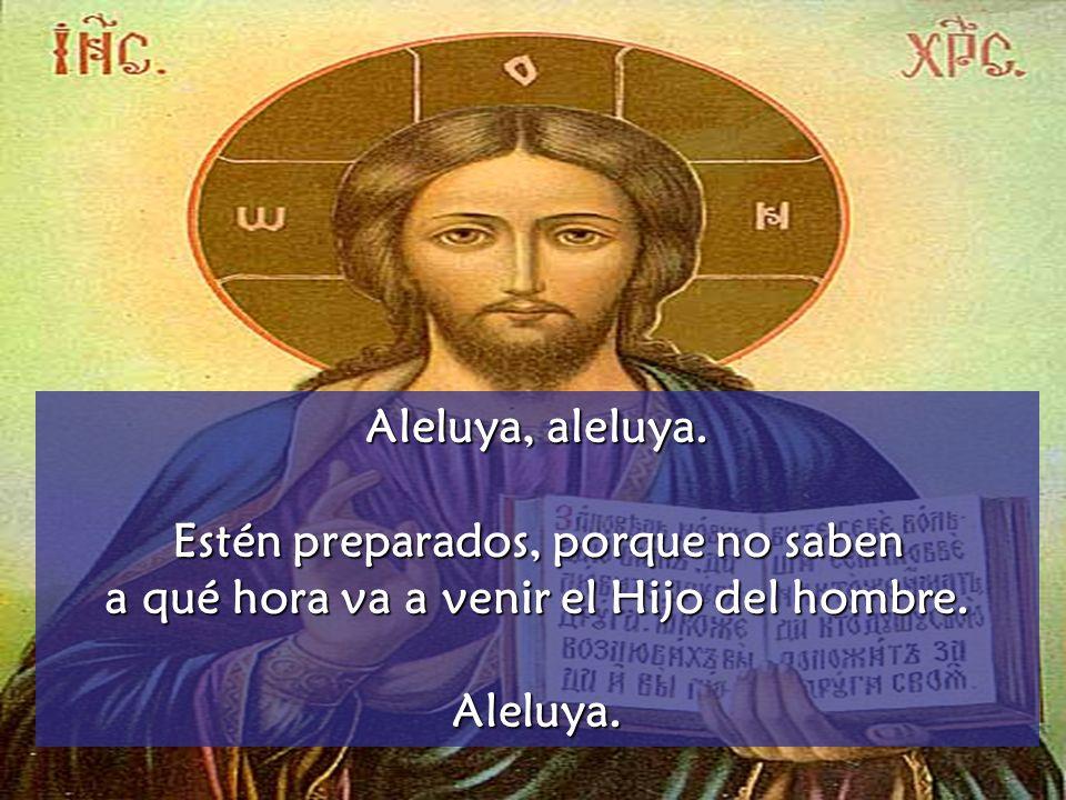 Aleluya, aleluya.Estén preparados, porque no saben a qué hora va a venir el Hijo del hombre.
