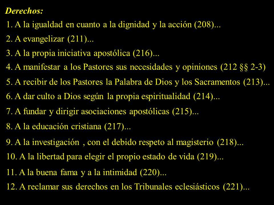 Derechos: 1.A la igualdad en cuanto a la dignidad y la acción (208)...