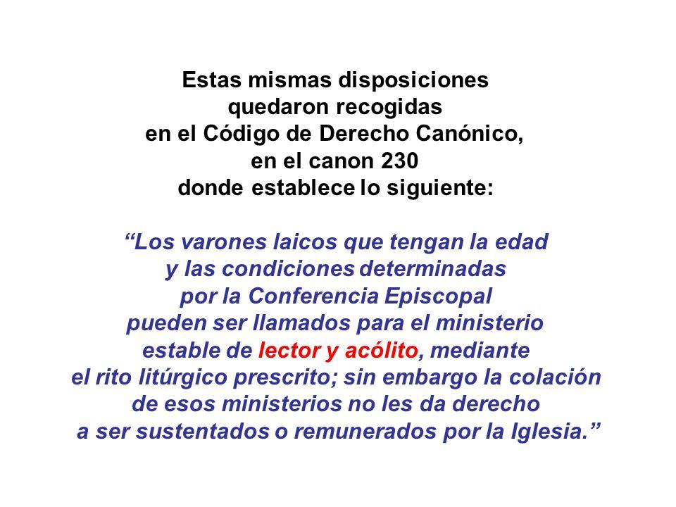 Estas mismas disposiciones quedaron recogidas en el Código de Derecho Canónico, en el canon 230 donde establece lo siguiente: Los varones laicos que t