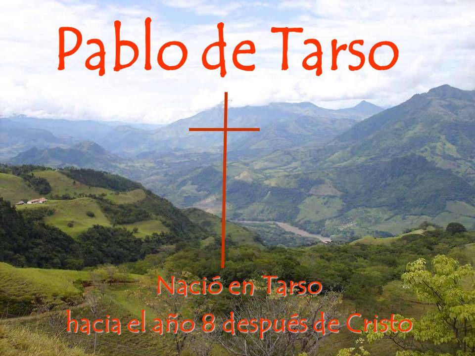 Nació en Tarso hacia el año 8 después de Cristo