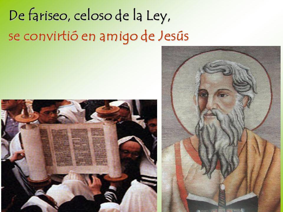 De fariseo, celoso de la Ley, se convirtió en amigo de Jesús